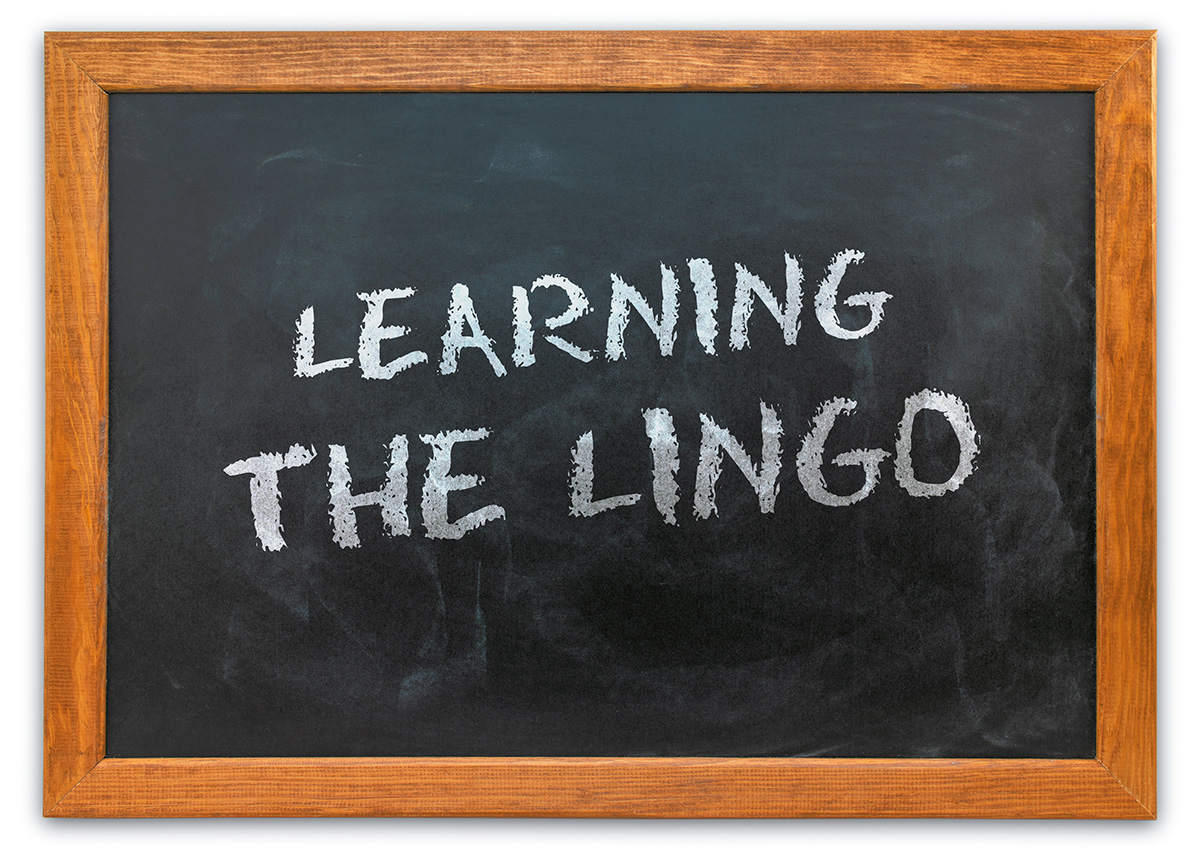 Learning The Lingo